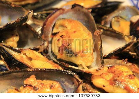 Seafood oysters with cheese, served in shells