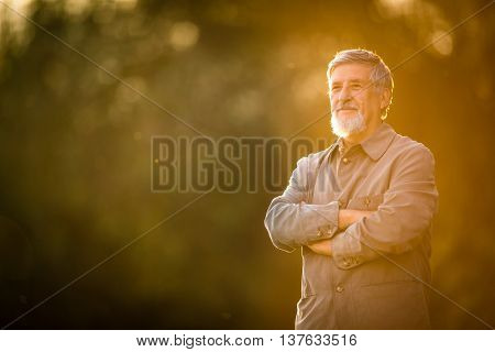 Portrait of a senior man outdoors, walking in a park (shallow DOF; color toned image)