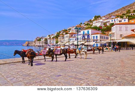 donkeys the means of transport at Hydra island Saronic Gulf Greece