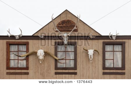 Western Log Home And Skull Gateway