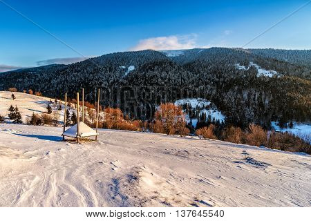woodshed behind the fence on the hillside cowered with snow nearconifer forest in winter mountains early in the morning