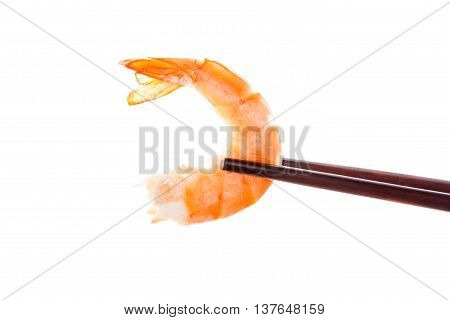 Delicious shrimp eating. Cooked prawn eating with chopsticks. Culinary and gourmet eating.