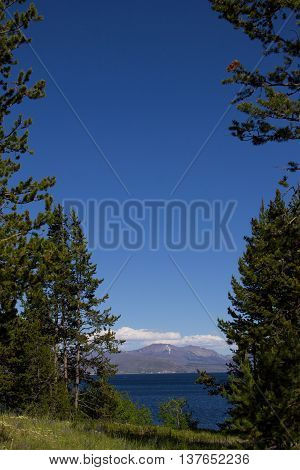 Peaking through the forest at Yellowstone Lake