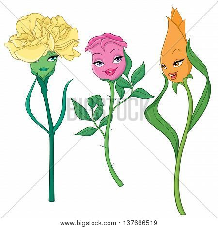 Fancy cartoon flowers: carnation, rose and tulip. Vector illustration isolated on white background.