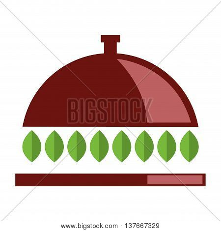 simple flat design dish tray with leaves icon vector illustration