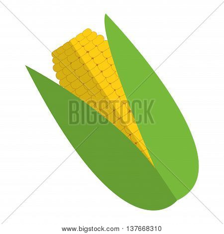 simple flat design corn cob icon vector illustration