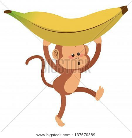 simple flat design monkey with playful face and banana cartoon icon vector illustration