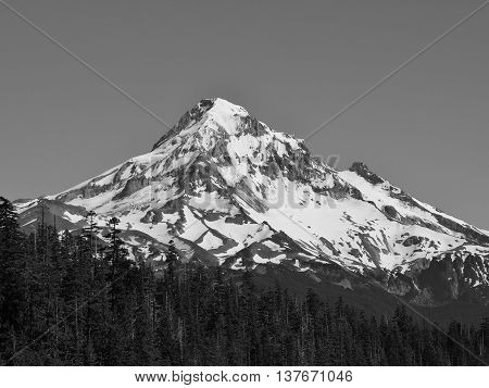 Black and White photo of Mt. Hood, Oregon