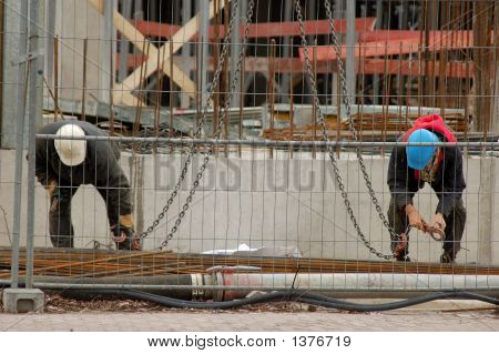 Two Construction Worker