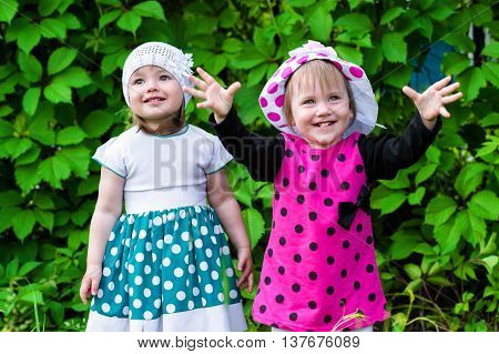 two little girls laughing on the background of green hedge