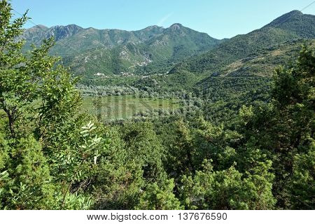 rural scene Skadar Lake, Montenegro