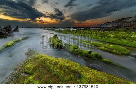 Sunset at Barrika beach with green alga