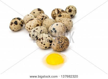 quail eggs color, cook on white background