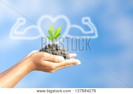 We love the world of ideas, man planted a tree in the hands.People love tree.World Environment Day