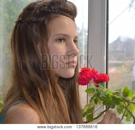 Hairstyle with long hair - fine weaving, a girl at the window near the geranium