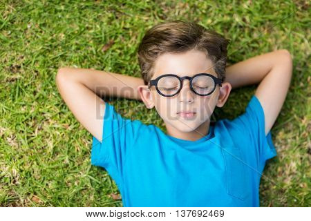 Cute young boy in spectacle sleeping on grass in park