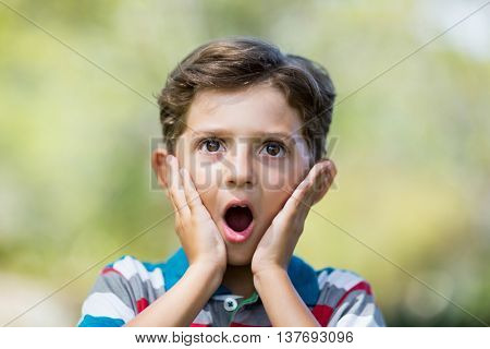 Young boy making surprise expression while pulling out funny faces in park