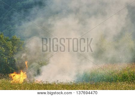 Wildfire At Countryside Meadow