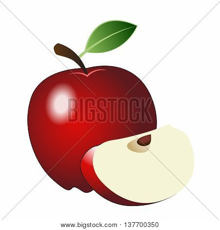 Red apple - whole apple and cut of apple. Vector illustration