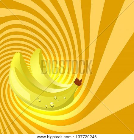 Striped spiral banana patisserie background. Banana fruit color. Banana spiral tunnel. Spiral background for cover design of banana fruit products. Vector Illustration.