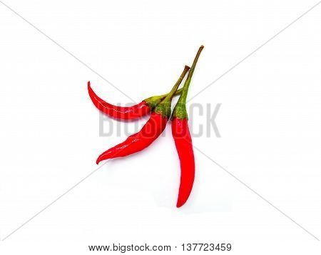 Three red chilli isolated on white background