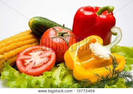 Photo of different vegetables on a white background