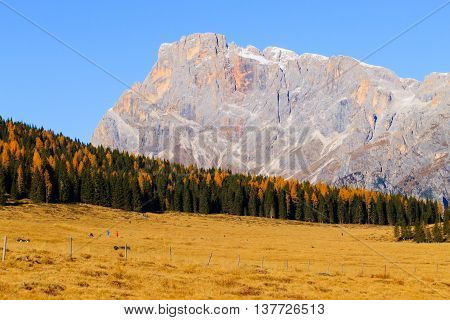 Autumn Panorama From Italian Alps