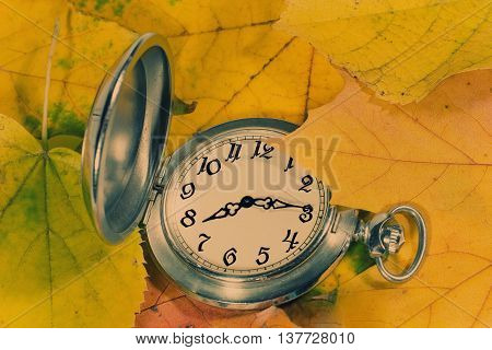 Antique watch among yellow autumn leaves (as an autumn background) retro style
