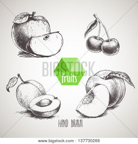 Hand drawn sketch style fruits set. Apple with quarter apricot with half of apricot double cherries and peach with quarter of peach. Organic food farm fresh fruit. Vintage style illustration