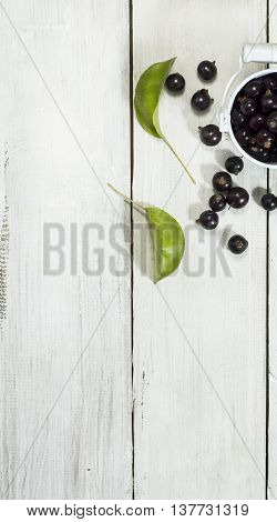 Black currants in a metal bucket on a white wooden background
