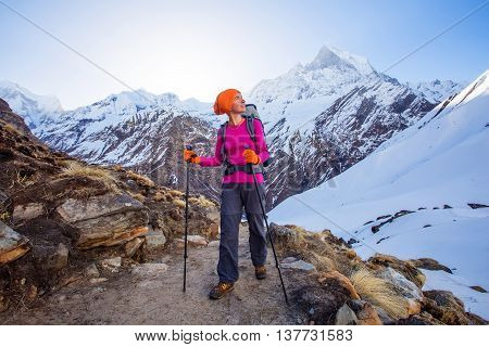 Hiker On The Trek In Himalayas, Annapurna Valley, Nepal