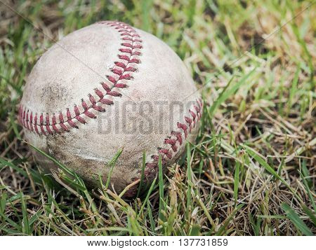 Nostalgic baseball in the grass on a baseball field, Selective focus and close up