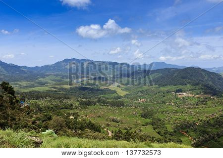 A Lush Green Valley Under a Blue Sky in Munnar, Kerala, India.