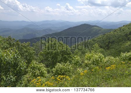 Picturesque view of the lushly scenic Appalachian Mountain wilderness of North Carolina in summer