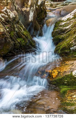 Forest creek with waterfalls. Water cascades over rocks in Great Smoky Mountains National Park.
