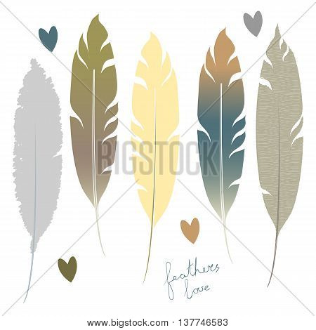 Set of stylized feathers in organic style. Vector illustration.