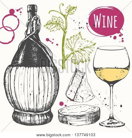Vector illustration with wine glass corkscrew old wine bottle grape twig cheese. Classical alcoholic drink.