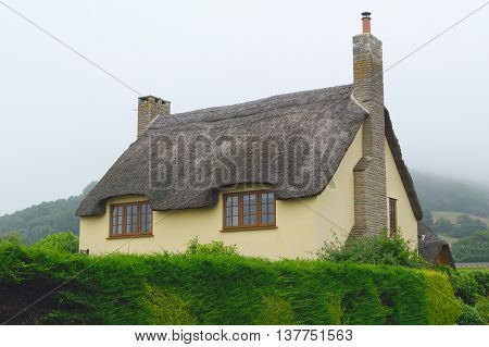 Beautiful old thatched cottage in Axmouth Devon