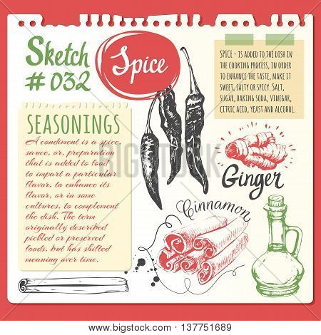 Vector illustration with sketch of cinnamon pepper ginger oil.