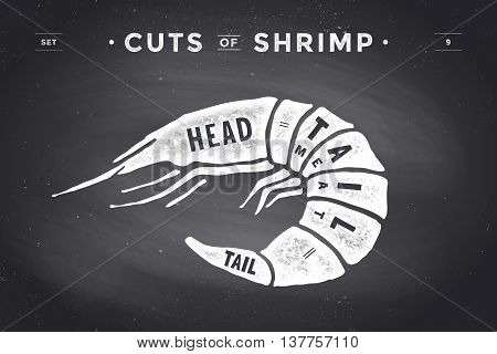Cut of meat set. Poster Butcher diagram and scheme - Shrimp. Vintage typographic hand-drawn visual guide for butcher shop on chalk black background. Vector illustration