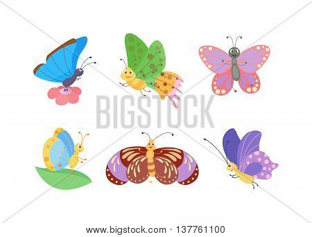 Cute flat butterfly vector. Flat butterflies isolated on white background.