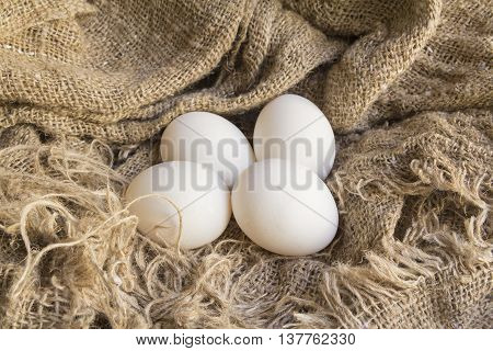 Closeup of a fresh white eggs on canvas Brown