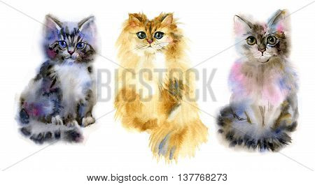 Illustration with a cute cats. Watercolor. Hand drawn.