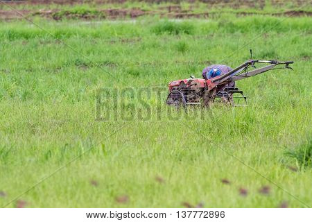 plowing the rice field that is already in the water