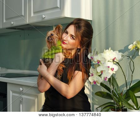 Girl holds on hands and embracing Yorkshire Terrier. Pedigree dog. Funny animals. Girl and pet in kitchen