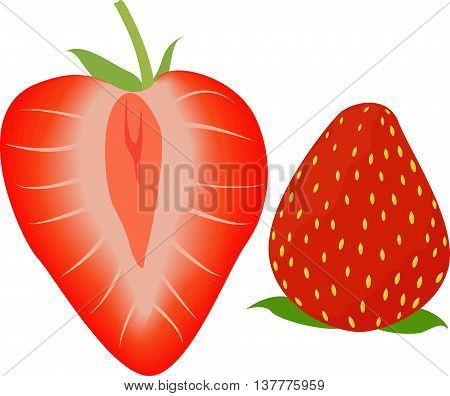 red ripe berry sweet strawberry, whole and half isolated on white. Vector illustration