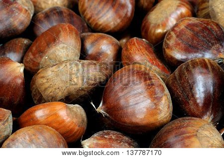 Whole raw chestnuts in shells as a food background.