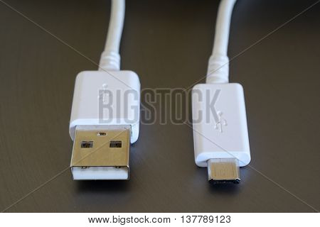 White USB and micro USB plugs closeup