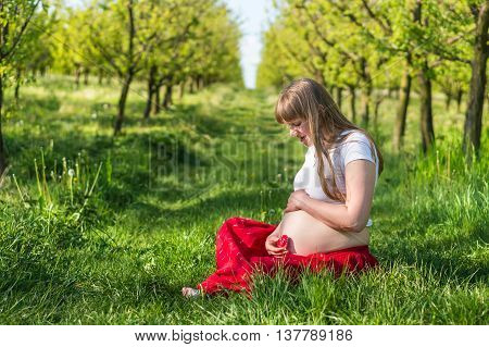 Pregnant Young Girl Sit On Grass In The Garden