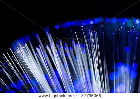 Blue fiber optic